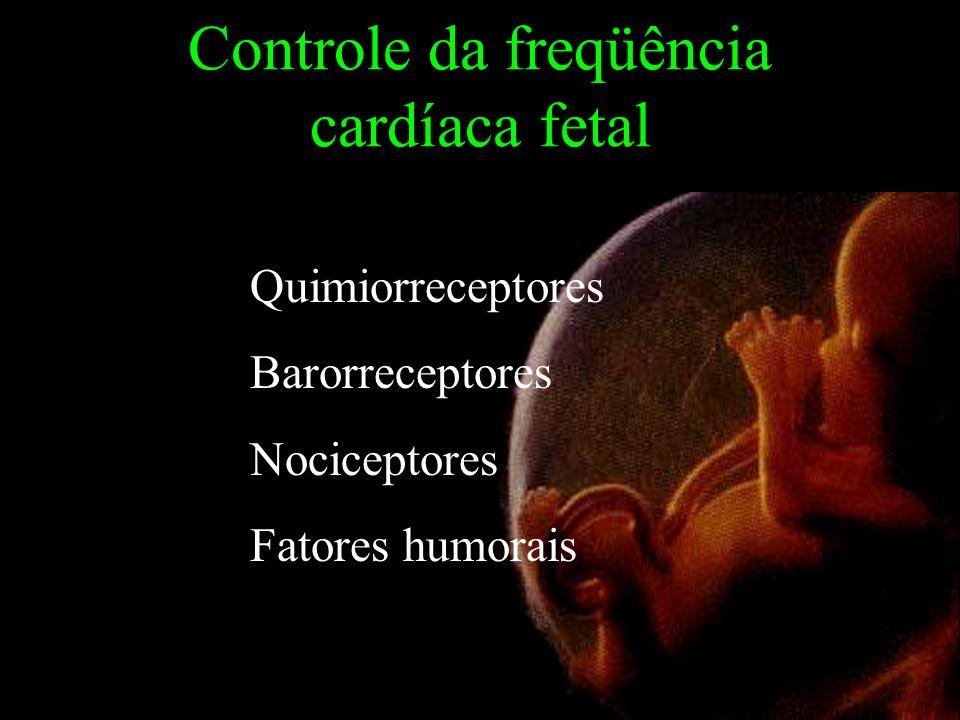 Controle da freqüência cardíaca fetal