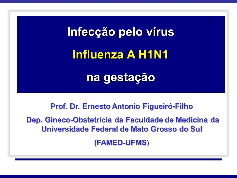Prof. Dr. Ernesto Antonio Figueiró-Filho
