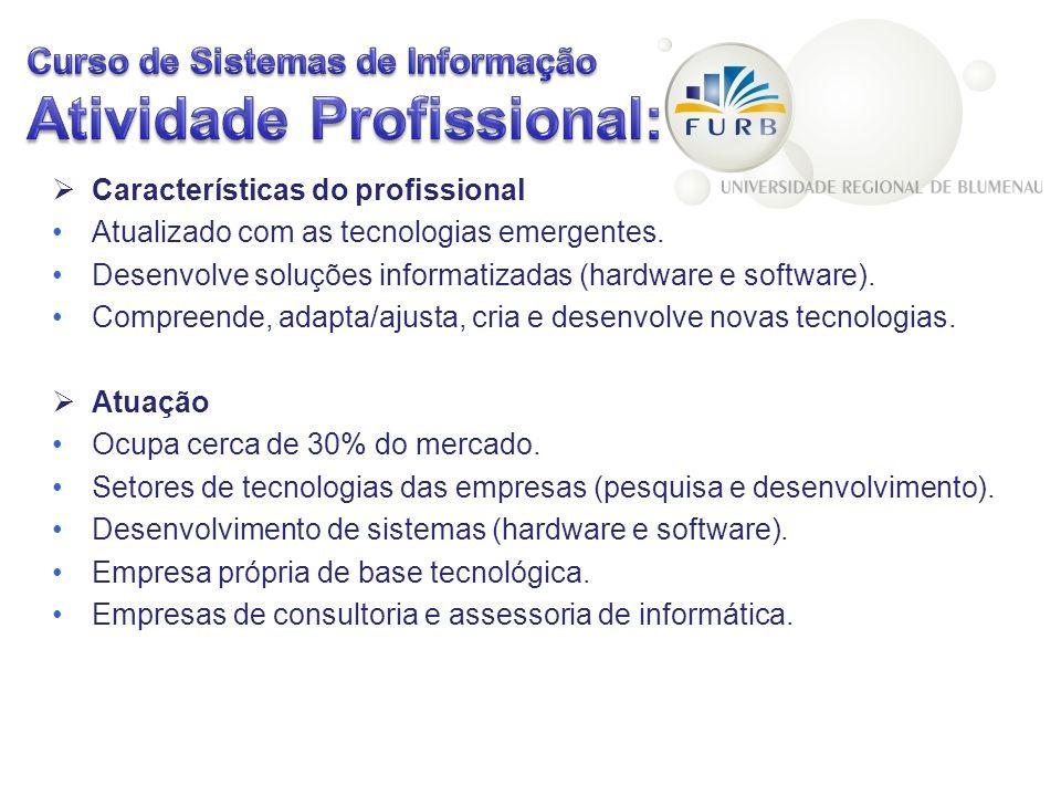 Curso de Sistemas de Informação Atividade Profissional: