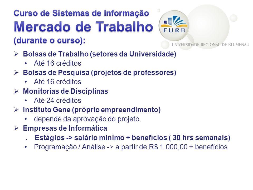 Curso de Sistemas de Informação Mercado de Trabalho (durante o curso):