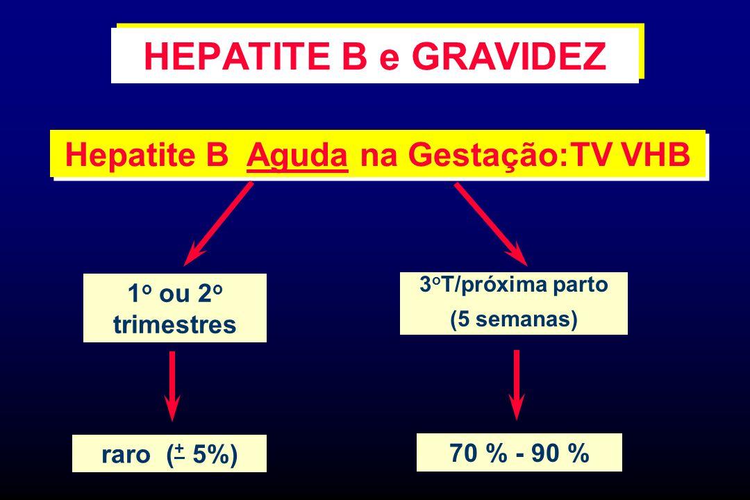 Hepatite B Aguda na Gestação:TV VHB