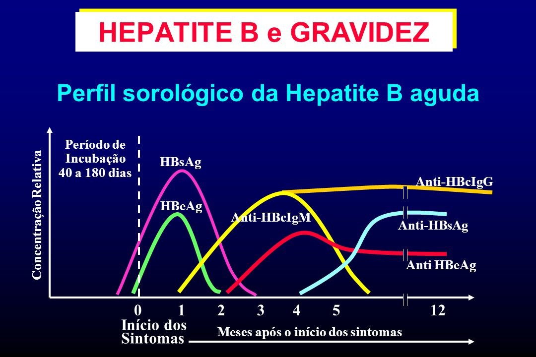 HEPATITE B e GRAVIDEZ Perfil sorológico da Hepatite B aguda 1 2 3 4 5