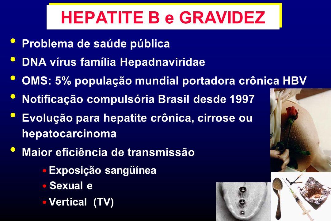 HEPATITE B e GRAVIDEZ Problema de saúde pública