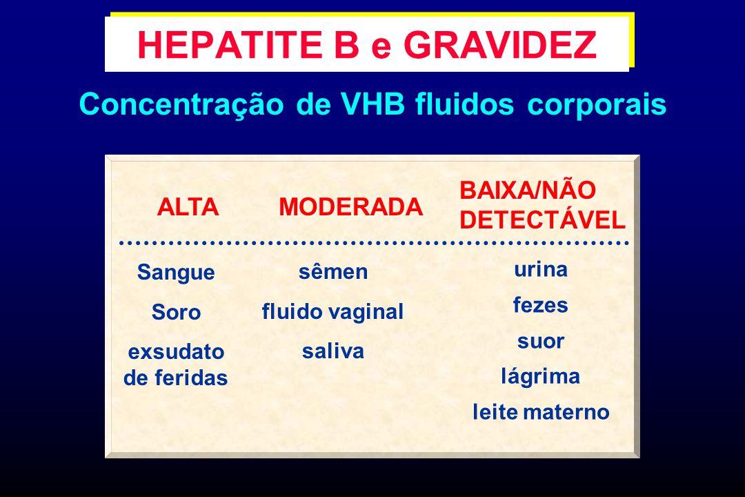 HEPATITE B e GRAVIDEZ Concentração de VHB fluidos corporais