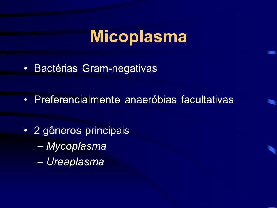 Micoplasma Bactérias Gram-negativas