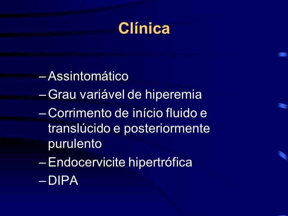 Clínica Assintomático Grau variável de hiperemia