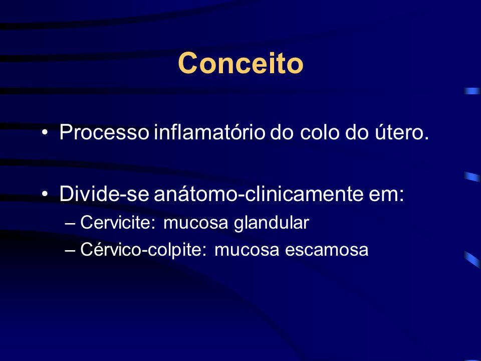 Conceito Processo inflamatório do colo do útero.