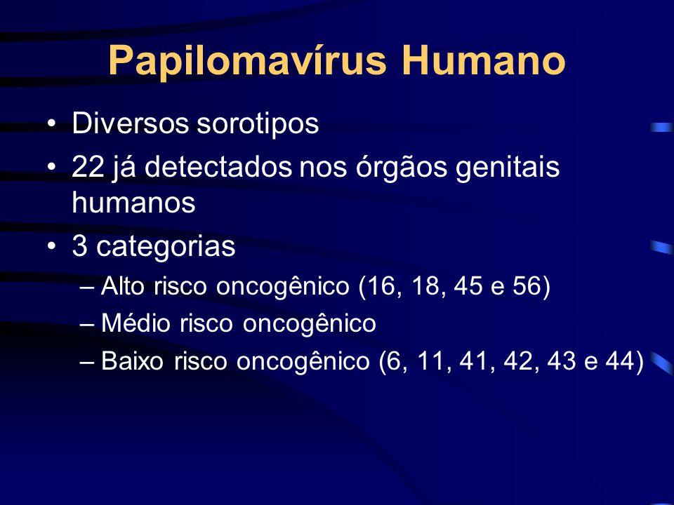 Papilomavírus Humano Diversos sorotipos