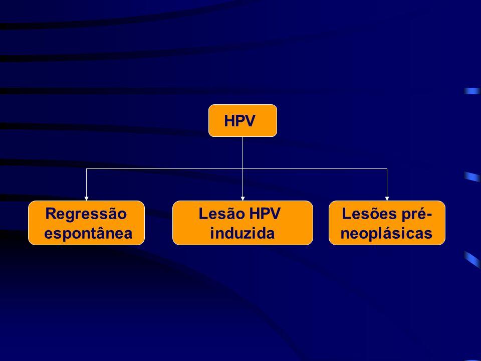 HPV Regressão espontânea Lesão HPV induzida Lesões pré- neoplásicas