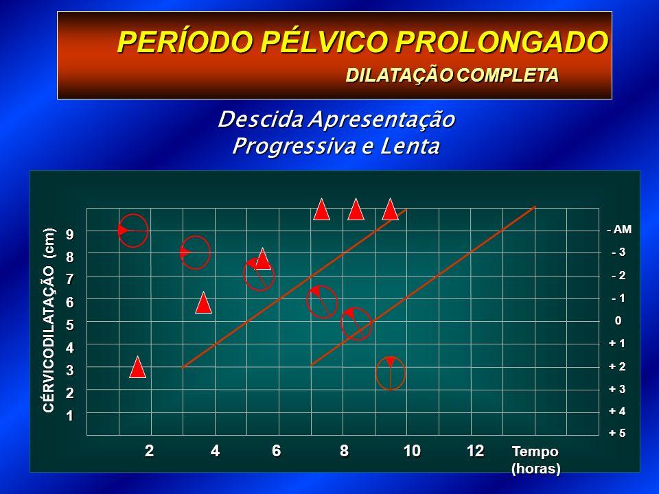 PERÍODO PÉLVICO PROLONGADO