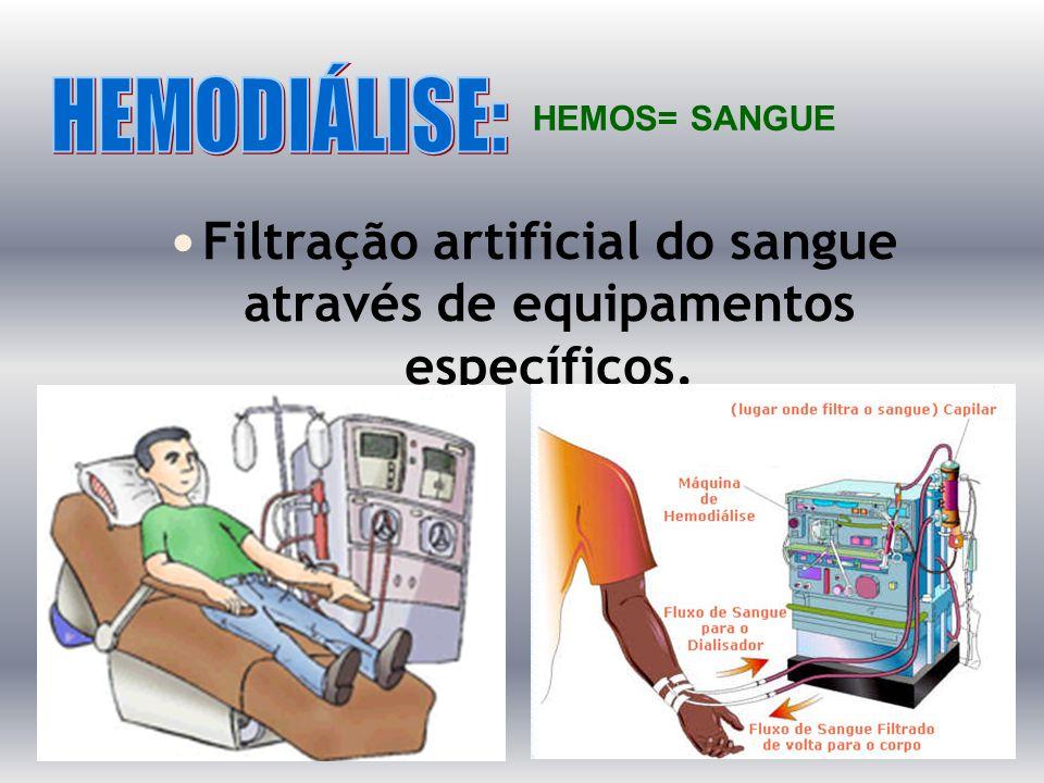 Filtração artificial do sangue através de equipamentos específicos.