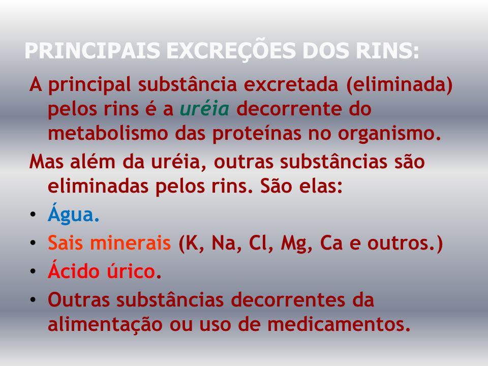 PRINCIPAIS EXCREÇÕES DOS RINS: