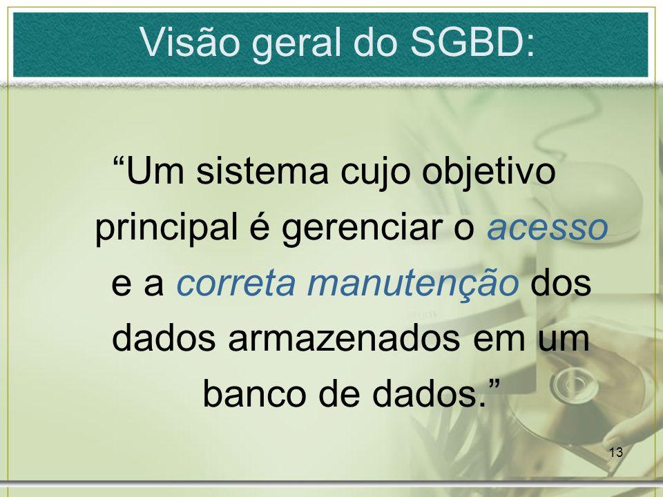 Visão geral do SGBD: Um sistema cujo objetivo principal é gerenciar o acesso e a correta manutenção dos dados armazenados em um banco de dados.