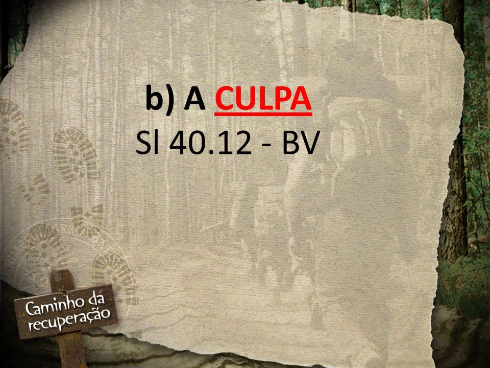 b) A CULPA Sl 40.12 - BV