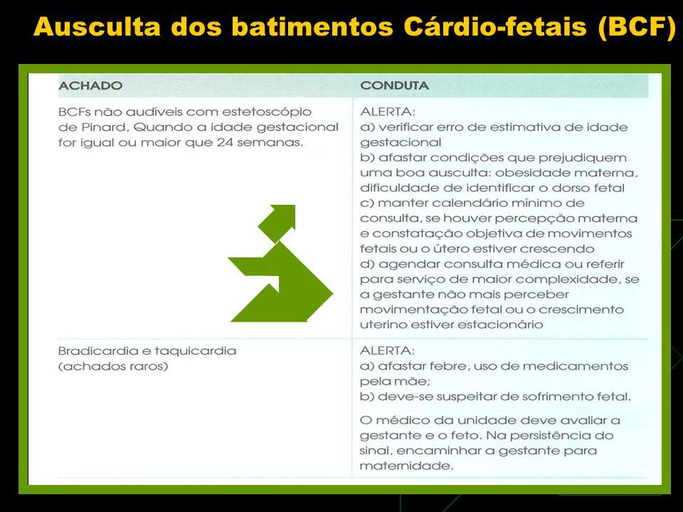 Ausculta dos batimentos Cárdio-fetais (BCF)