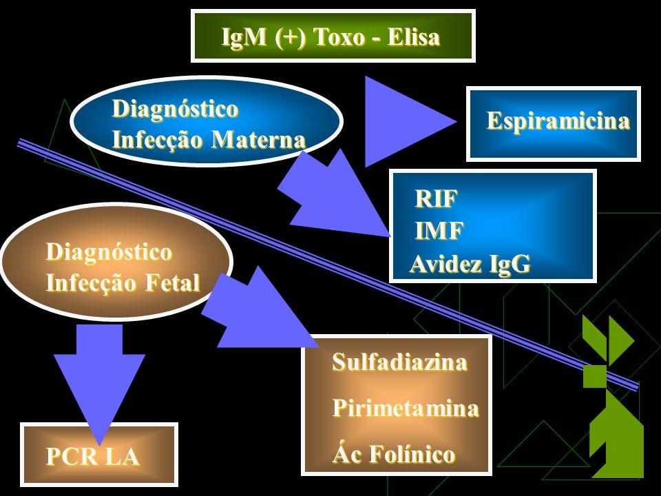 IgM (+) Toxo - Elisa Diagnóstico Infecção Materna. Espiramicina. RIF. IMF. Avidez IgG. Diagnóstico Infecção Fetal.