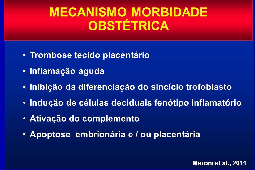 MECANISMO MORBIDADE OBSTÉTRICA