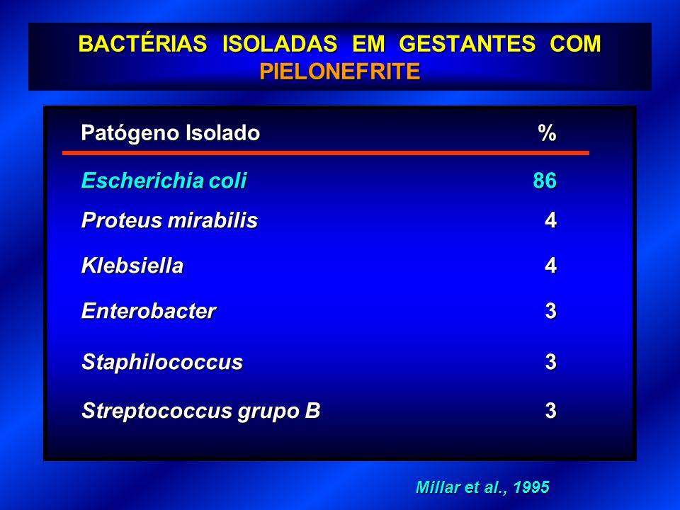 BACTÉRIAS ISOLADAS EM GESTANTES COM PIELONEFRITE