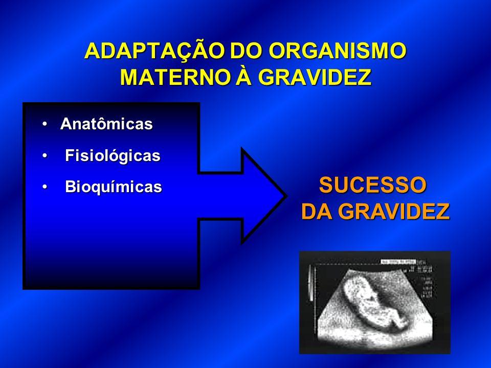 ADAPTAÇÃO DO ORGANISMO MATERNO À GRAVIDEZ