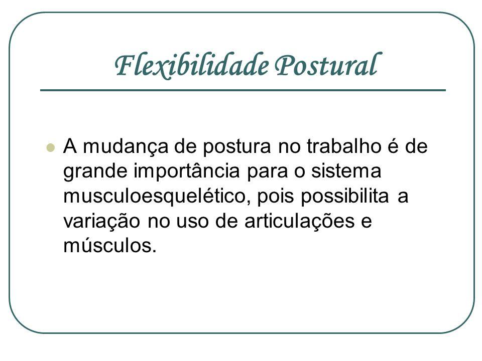 Flexibilidade Postural