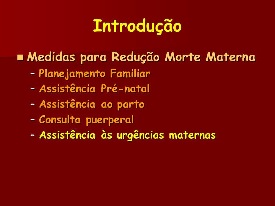 Introdução Medidas para Redução Morte Materna Planejamento Familiar