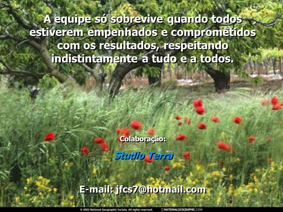 E-mail: jfcs7@hotmail.com