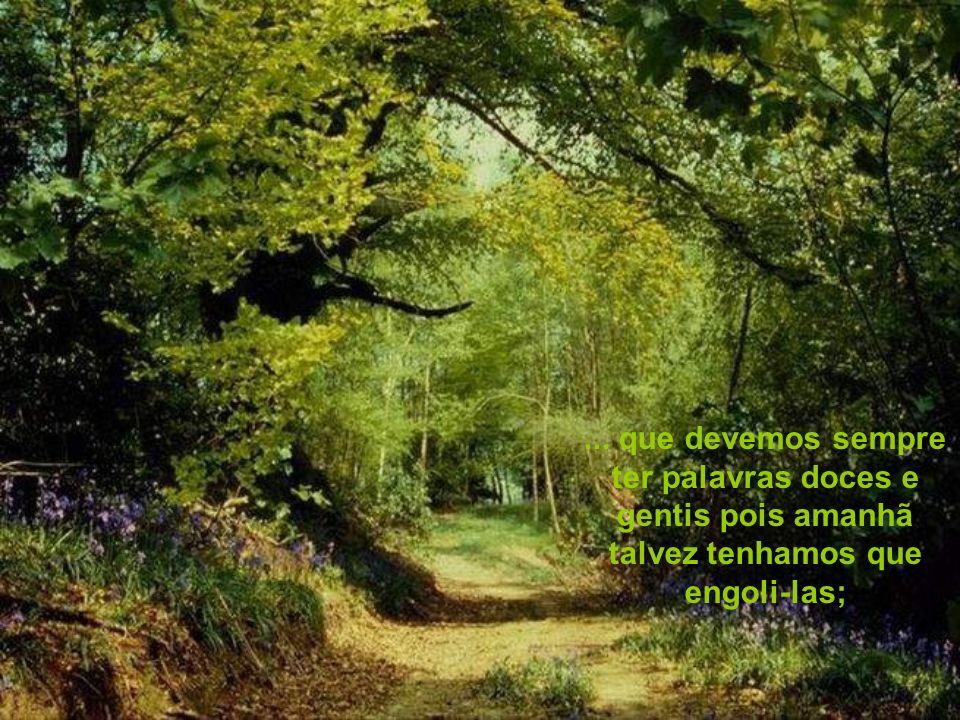 ... que devemos sempre ter palavras doces e gentis pois amanhã talvez tenhamos que engoli-las;