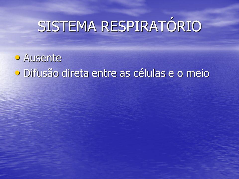 SISTEMA RESPIRATÓRIO Ausente Difusão direta entre as células e o meio