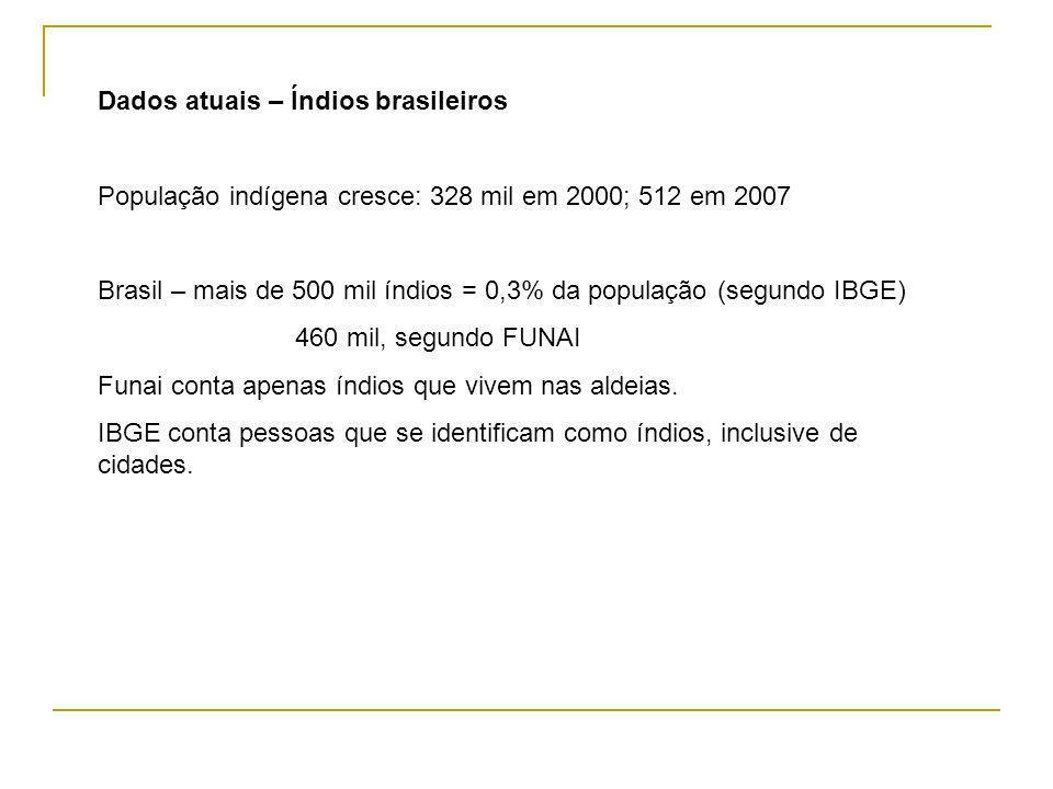 Dados atuais – Índios brasileiros
