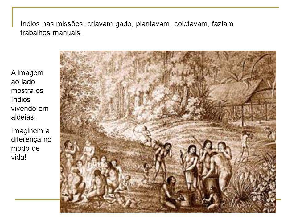 Índios nas missões: criavam gado, plantavam, coletavam, faziam trabalhos manuais.