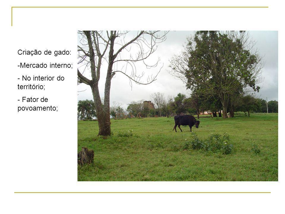 Criação de gado: Mercado interno; No interior do território; Fator de povoamento;
