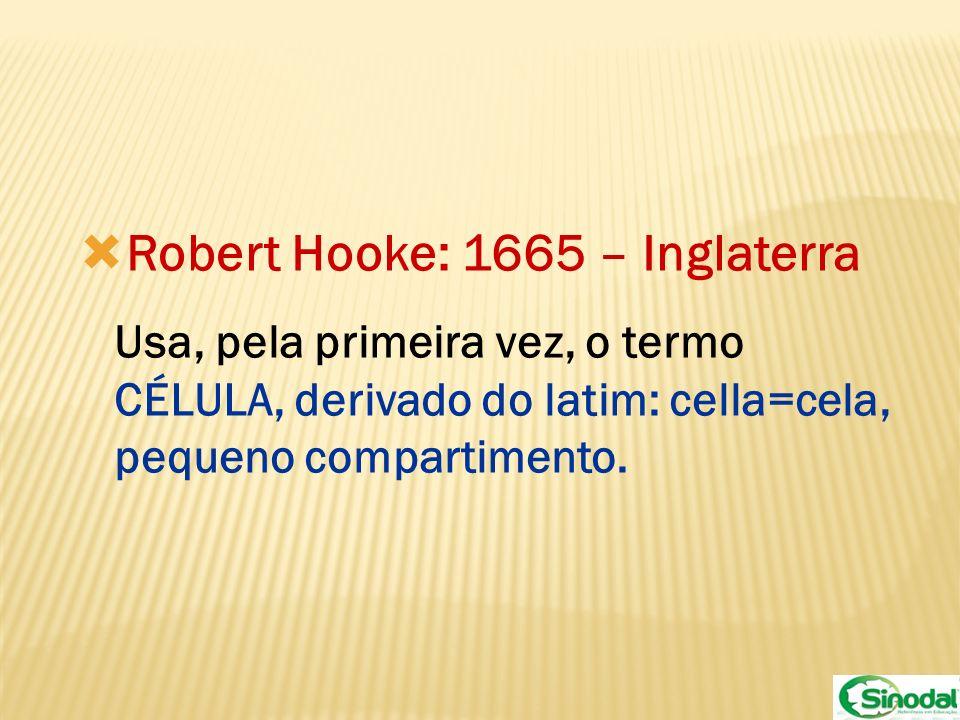Robert Hooke: 1665 – Inglaterra