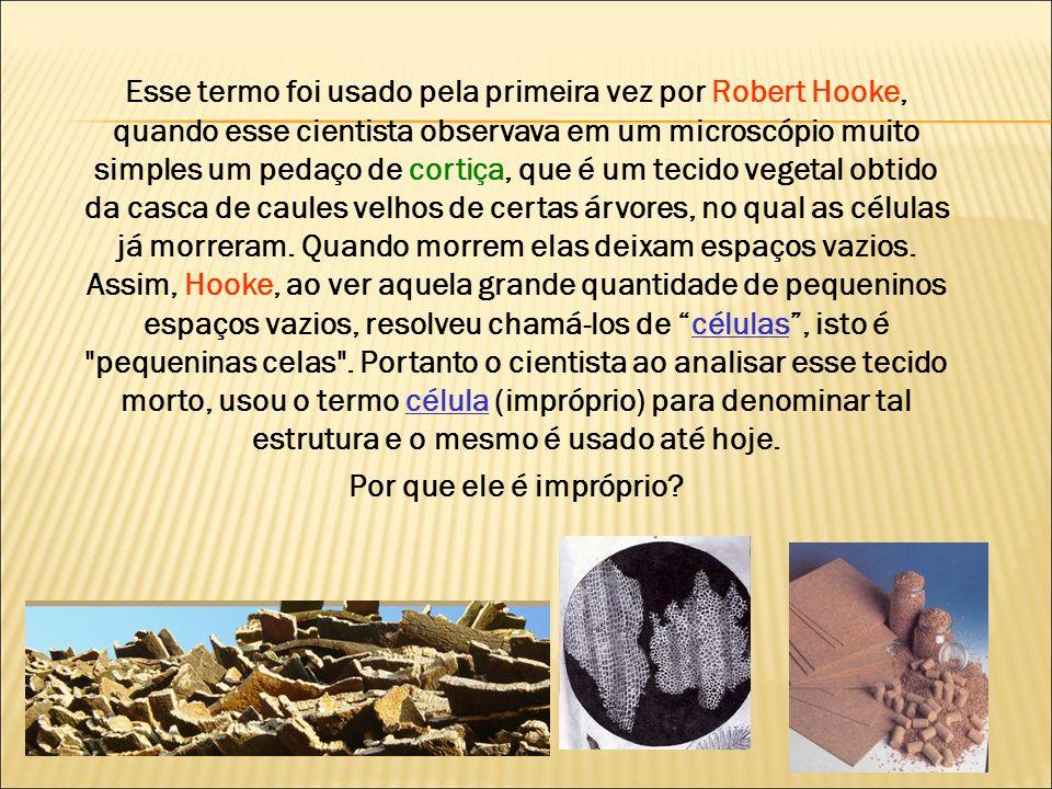 Esse termo foi usado pela primeira vez por Robert Hooke, quando esse cientista observava em um microscópio muito simples um pedaço de cortiça, que é um tecido vegetal obtido da casca de caules velhos de certas árvores, no qual as células já morreram. Quando morrem elas deixam espaços vazios. Assim, Hooke, ao ver aquela grande quantidade de pequeninos espaços vazios, resolveu chamá-los de células , isto é pequeninas celas . Portanto o cientista ao analisar esse tecido morto, usou o termo célula (impróprio) para denominar tal estrutura e o mesmo é usado até hoje.