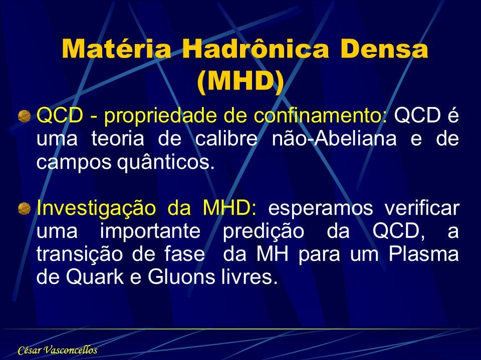Matéria Hadrônica Densa (MHD)