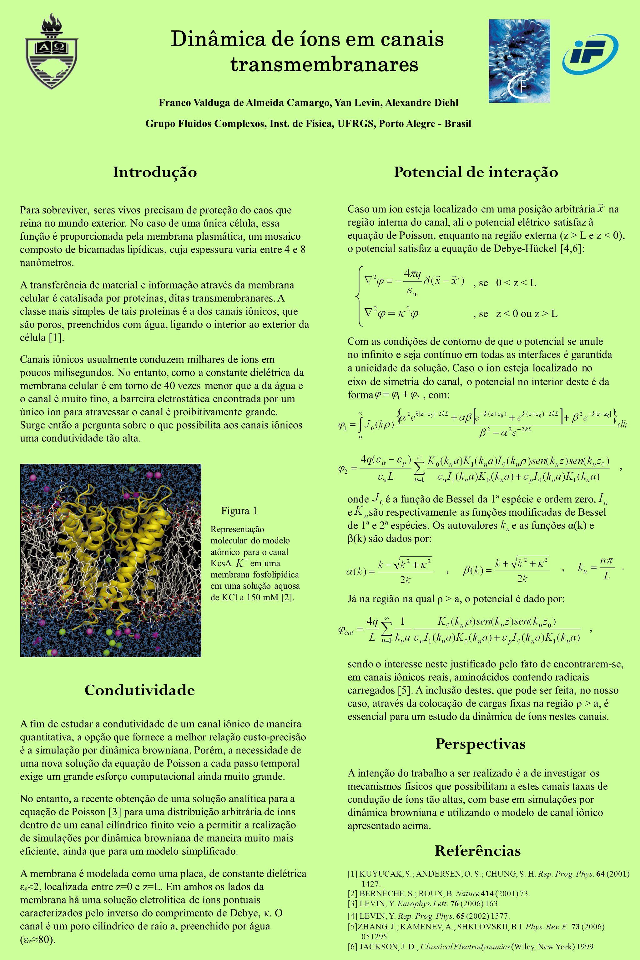 Dinâmica de íons em canais transmembranares