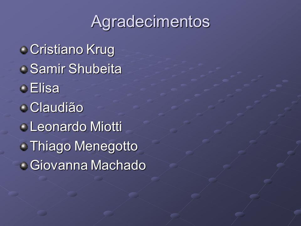 Agradecimentos Cristiano Krug Samir Shubeita Elisa Claudião