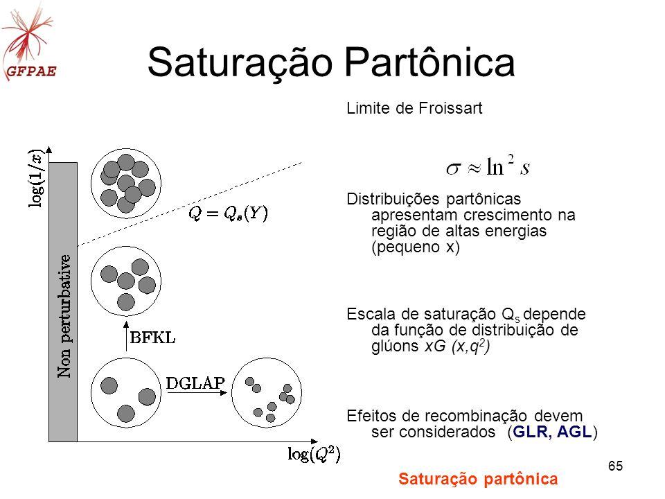 Saturação Partônica Limite de Froissart