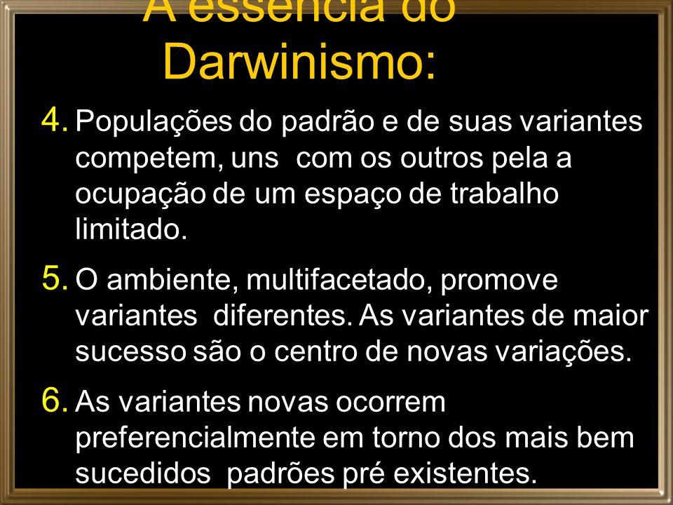 A essência do Darwinismo:
