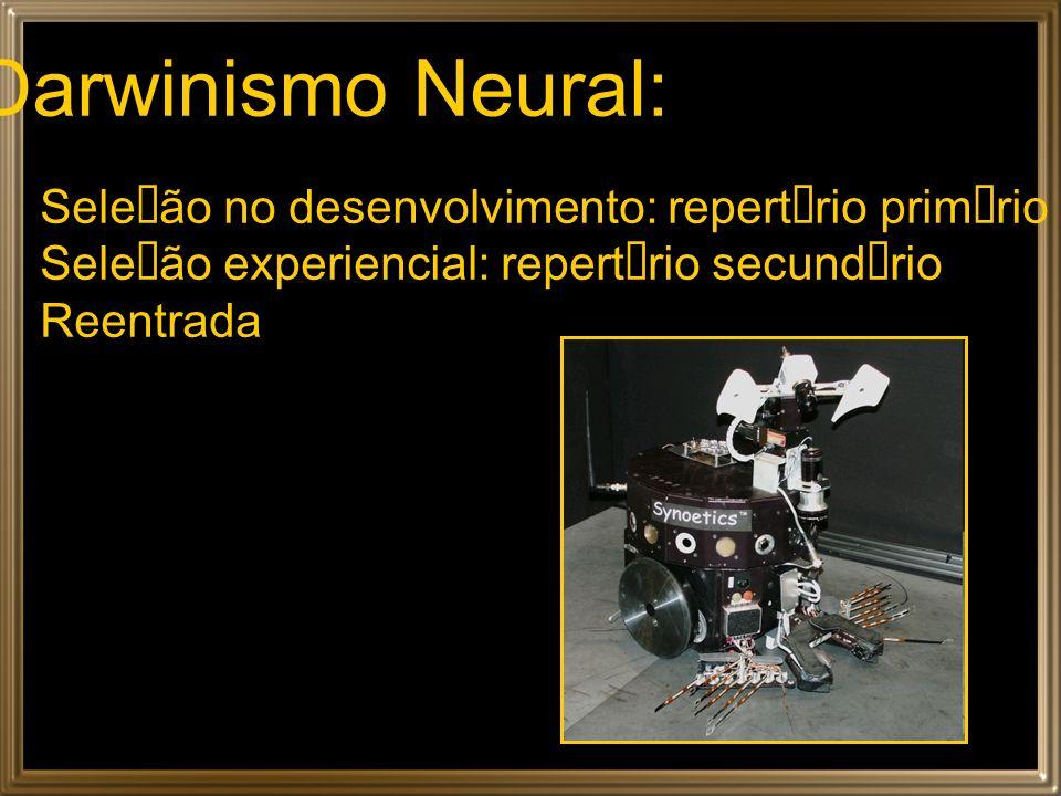Darwinismo Neural: Seleção no desenvolvimento: repertório primário