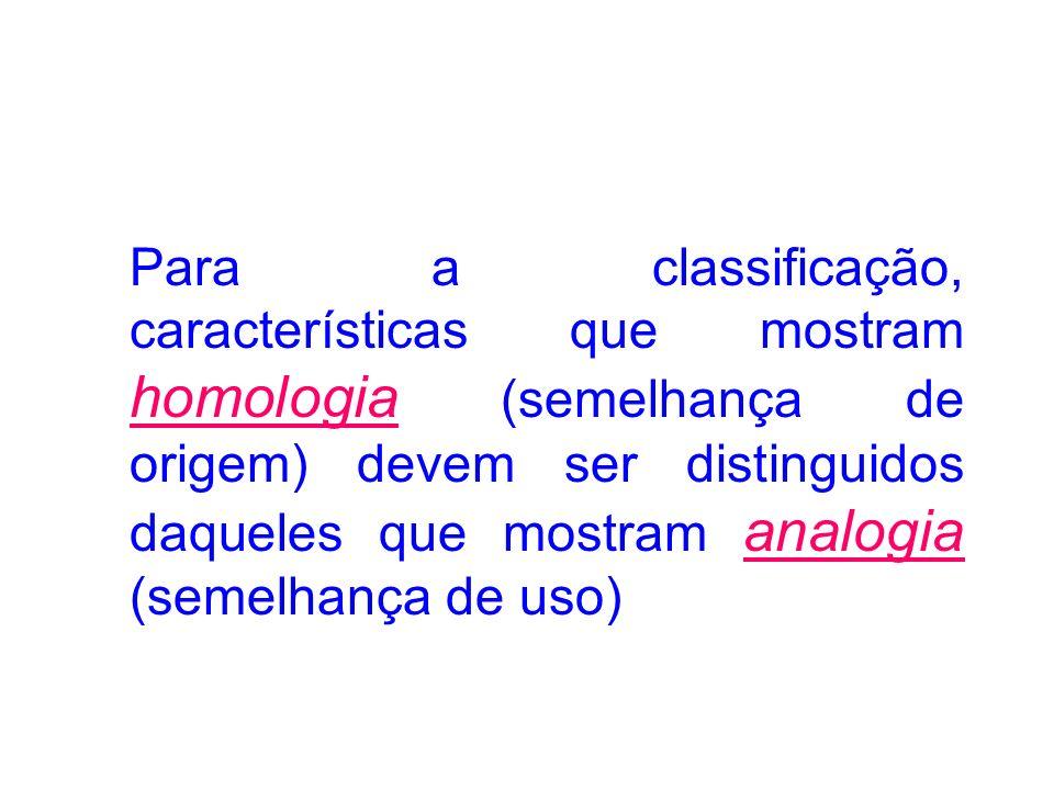 Para a classificação, características que mostram homologia (semelhança de origem) devem ser distinguidos daqueles que mostram analogia (semelhança de uso)