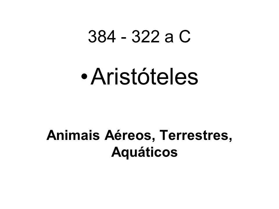 Animais Aéreos, Terrestres, Aquáticos
