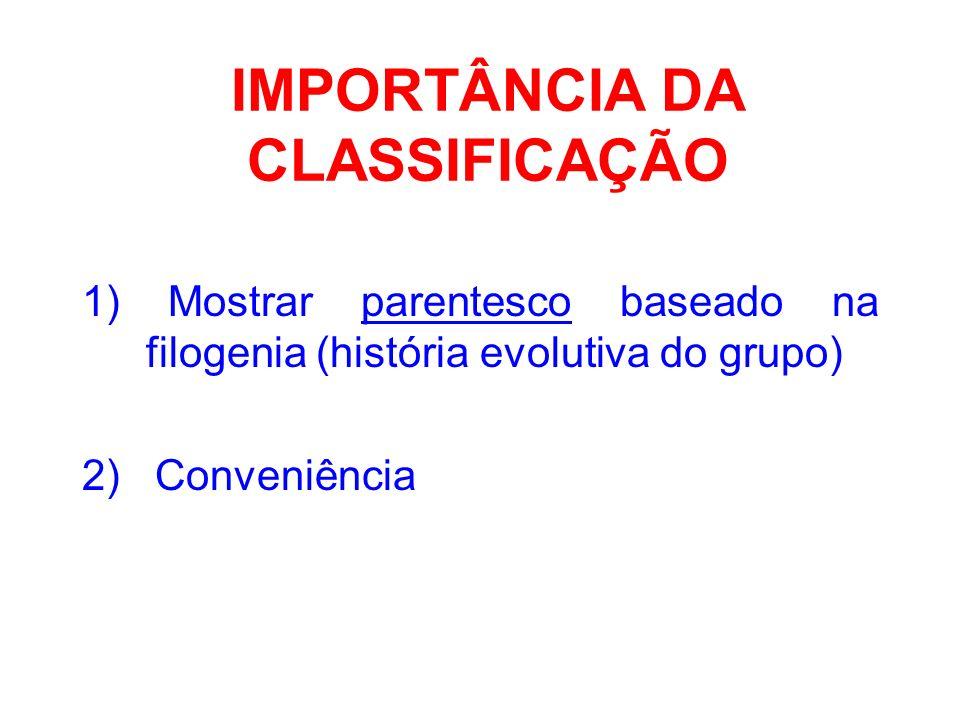 IMPORTÂNCIA DA CLASSIFICAÇÃO