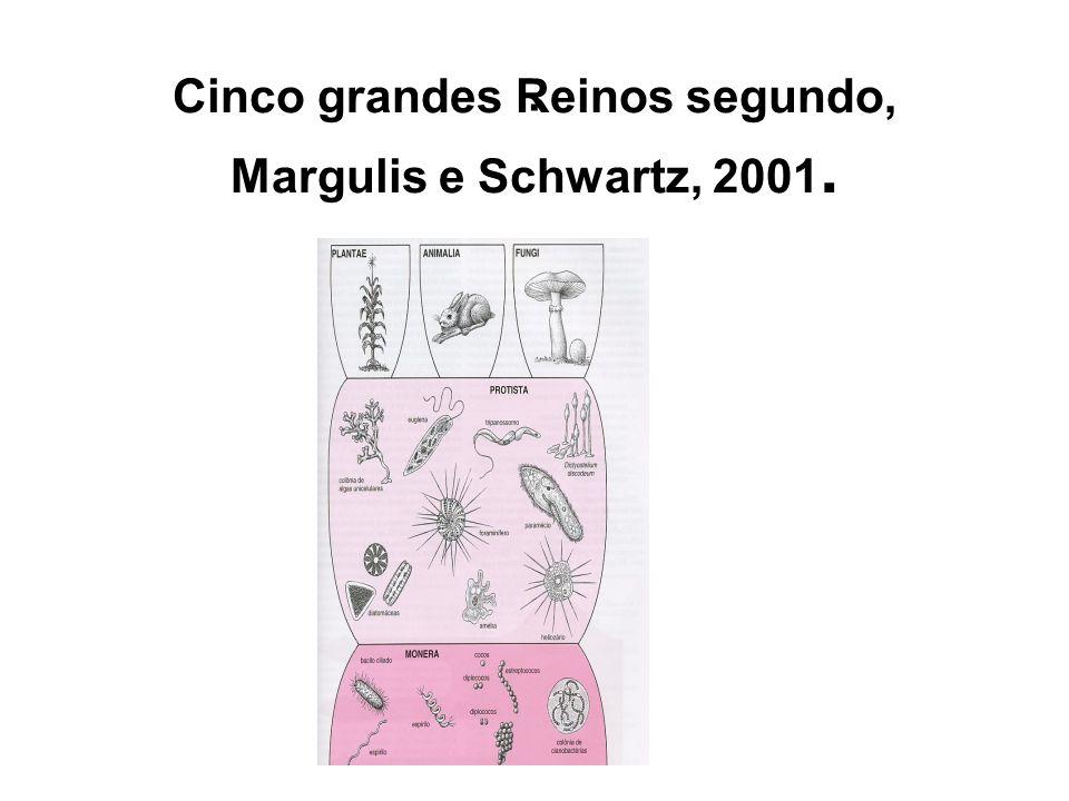 Cinco grandes Reinos segundo, Margulis e Schwartz, 2001.