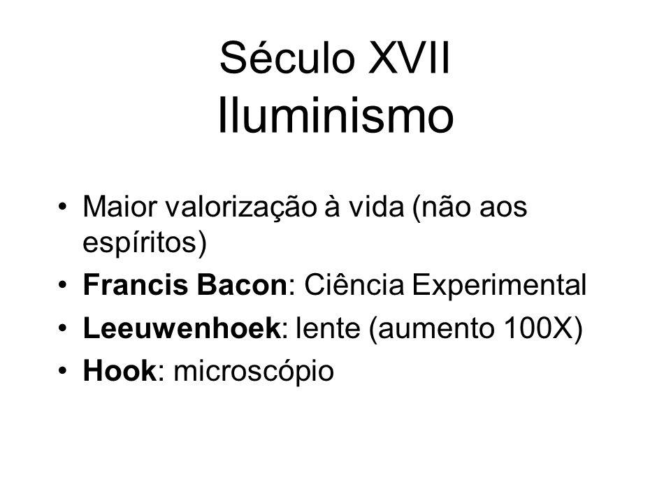 Século XVII Iluminismo