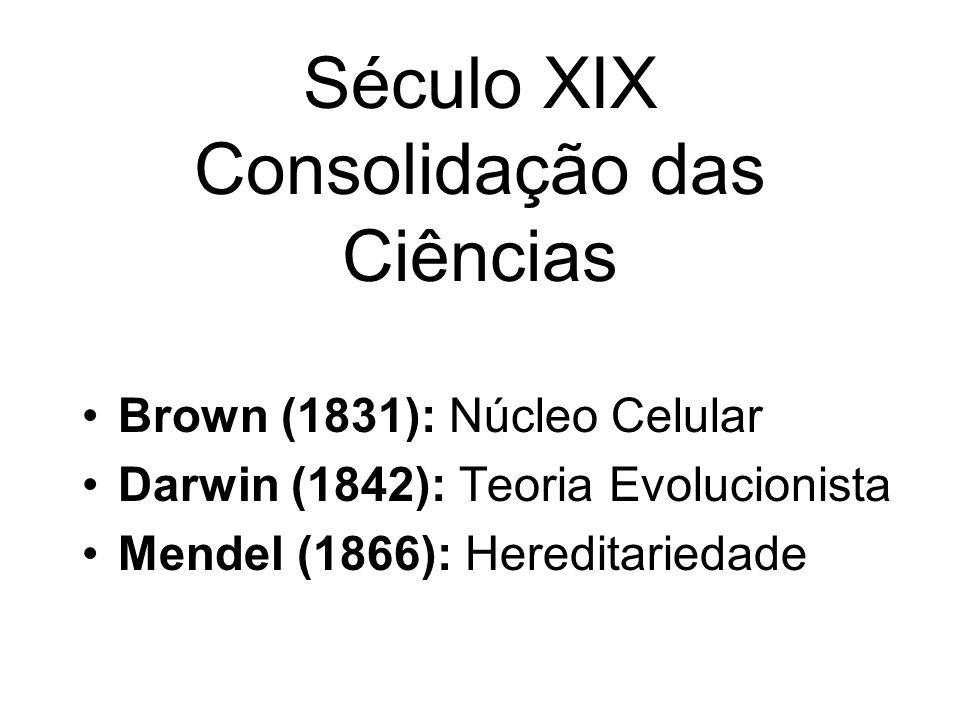 Século XIX Consolidação das Ciências