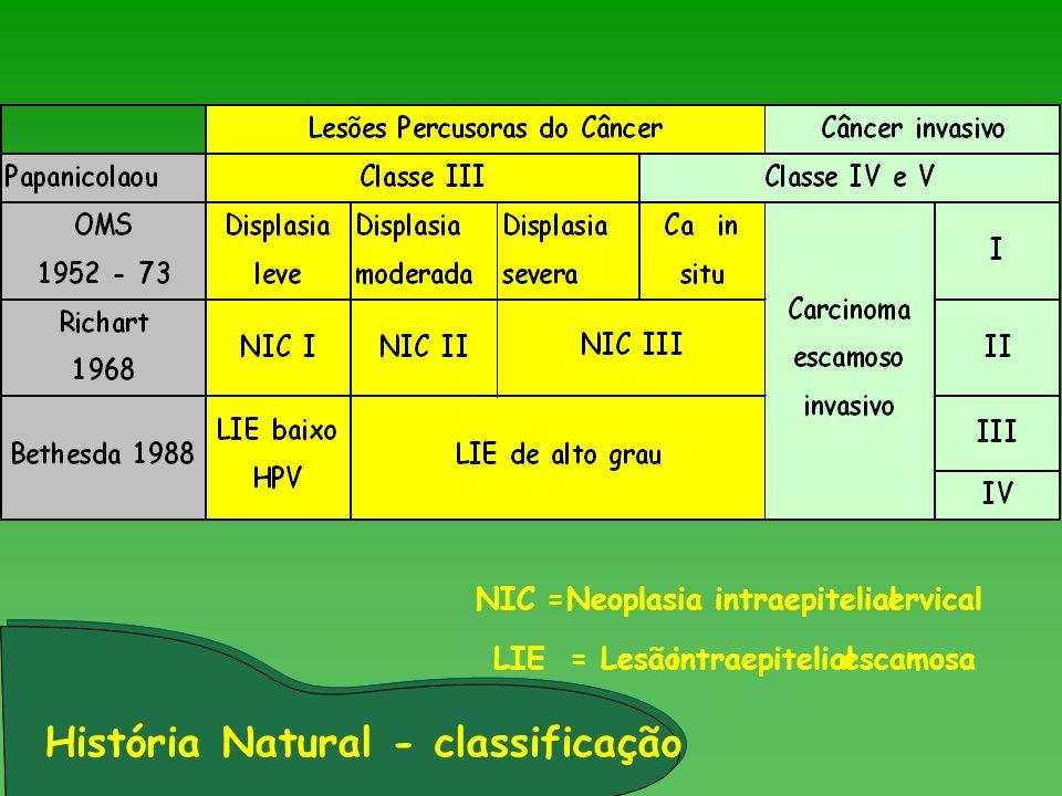 História Natural - classificação