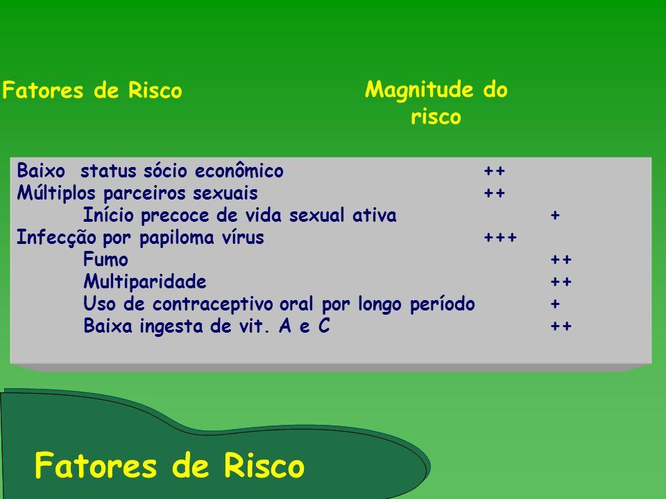 Fatores de Risco Fatores de Risco Magnitude do risco
