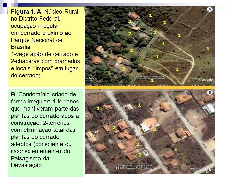 Figura 1. A. Núcleo Rural no Distrito Federal, ocupação irregular