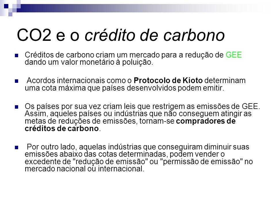 CO2 e o crédito de carbono