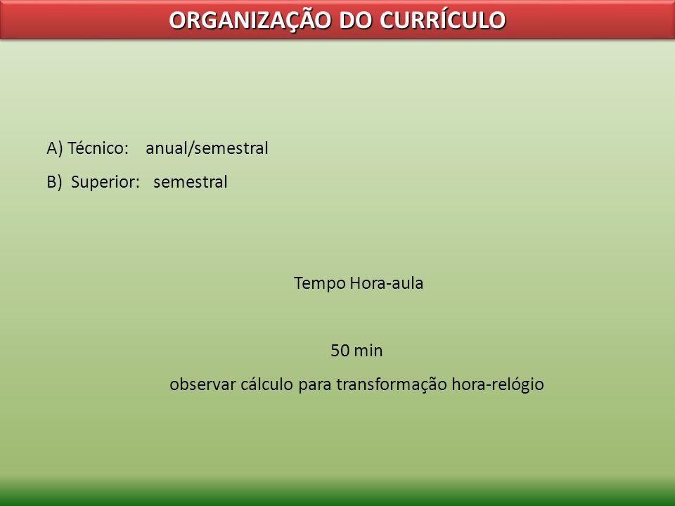 ORGANIZAÇÃO DO CURRÍCULO